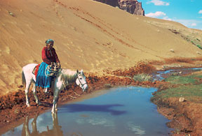 Giclee Prints in several sizes of Navajo Indian Watering her Horse